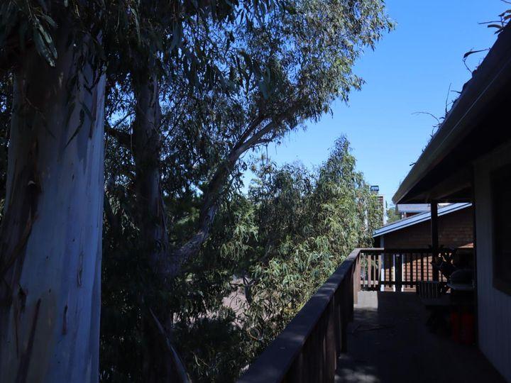 240 Coronado Ave San Carlos CA Home. Photo 12 of 14