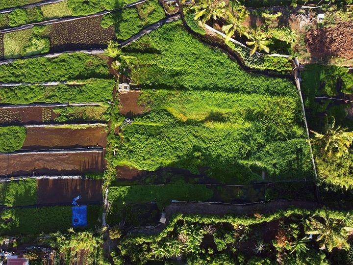 96-189 Waiawa Rd Pearl City HI Multi-family home. Photo 5 of 10