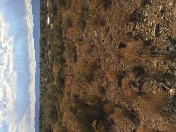 000 S Bright Star Ln, Under 5 Acres, AZ