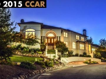 1015 Via Del Gato, Alamo Ranch Ests, CA