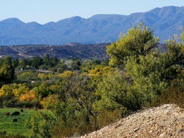 11104 E Majestic Vista Ln, Rio Bonito Ranch, AZ