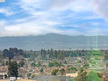 16333 Ridgehaven Dr #1003, San Leandro, CA, 94578 Townhouse. Photo 3 of 20