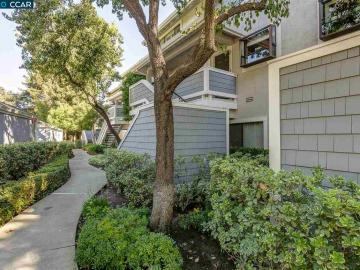 2600 Oak Rd unit #295, Ashford Court, CA