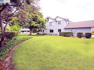 34604 Gucci Ter, Ardenwood, CA