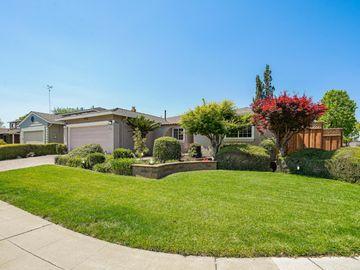 4111 Haines Ave, San Jose, CA