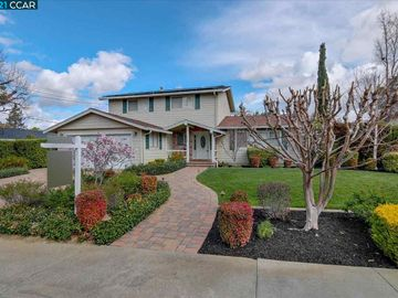 412 Candleberry Rd, Woodlands, CA