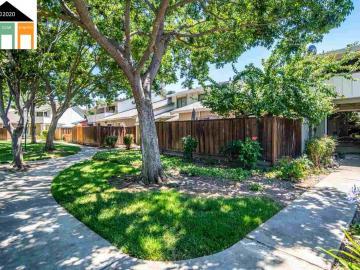 562 Morgan Cmn, Peppertree, CA