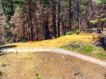 825 Kings Hwy, Boulder Creek, CA