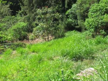 99-460 Fernridge Pl #15-C, Halawa Heights, HI